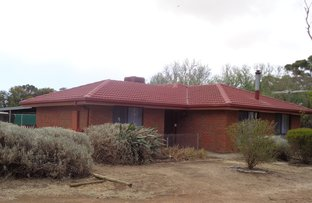 Picture of 61 WILLIAMS ROAD, Two Wells SA 5501