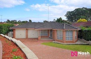 6 Joseph Banks Court, Mount Annan NSW 2567