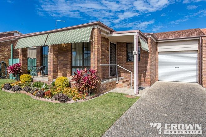 Picture of 65/56 MILLER STREET, KIPPA-RING QLD 4021