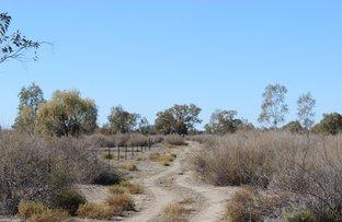 Picture of Quambone NSW 2831