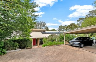 Picture of 18 Glenberrie Place, Hawthorndene SA 5051
