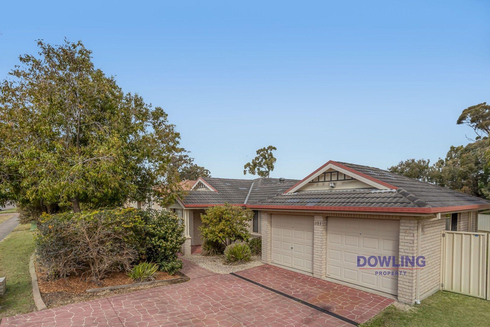 151 Kindlebark Drive, Medowie NSW 2318, Image 0