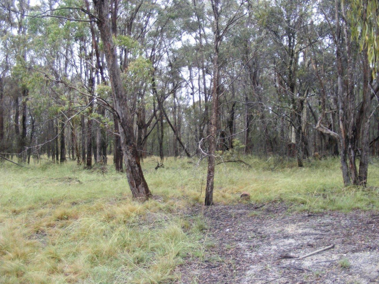 Lot 7/1000 Tablelands Road, Red Range NSW 2370, Image 2