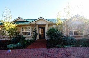Picture of 1A Ashmore Street, Glenunga SA 5064