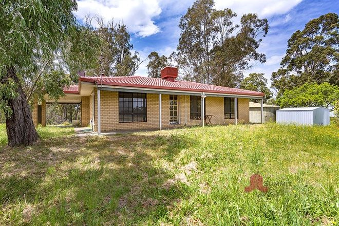 Picture of 17291 South Western  Highway, BOYANUP WA 6237