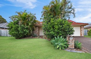 Picture of 7 Sunflower Crescent, Upper Caboolture QLD 4510