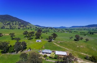 8029 Murray Valley Hwy, Bullioh VIC 3700