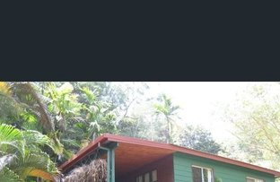 Picture of 18 Rob Veivers Dr, Kuranda QLD 4881