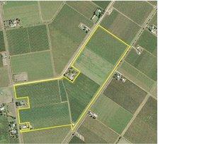 Farm 1561 Pratt Road, Yenda NSW 2681
