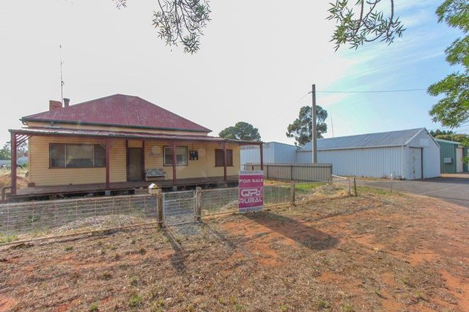 Picture of 49 Berrembed Street, GRONG GRONG NSW 2652