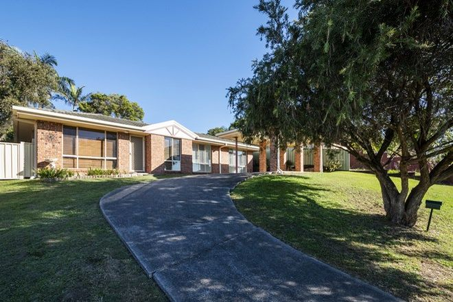Picture of 29 Peppermint Place, SOUTH GRAFTON NSW 2460