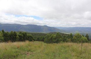 Picture of 1924 Billirimba Road, Tenterfield NSW 2372