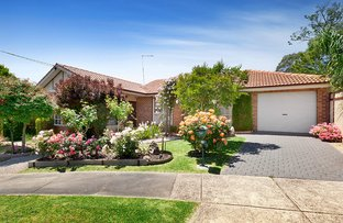 Picture of 17 Melrose Avenue, Macleod VIC 3085