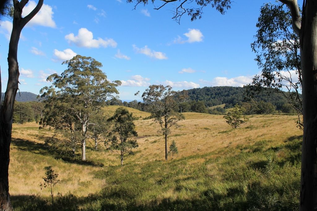 525 Homeleigh Road - Homeleigh, Kyogle NSW 2474, Image 1