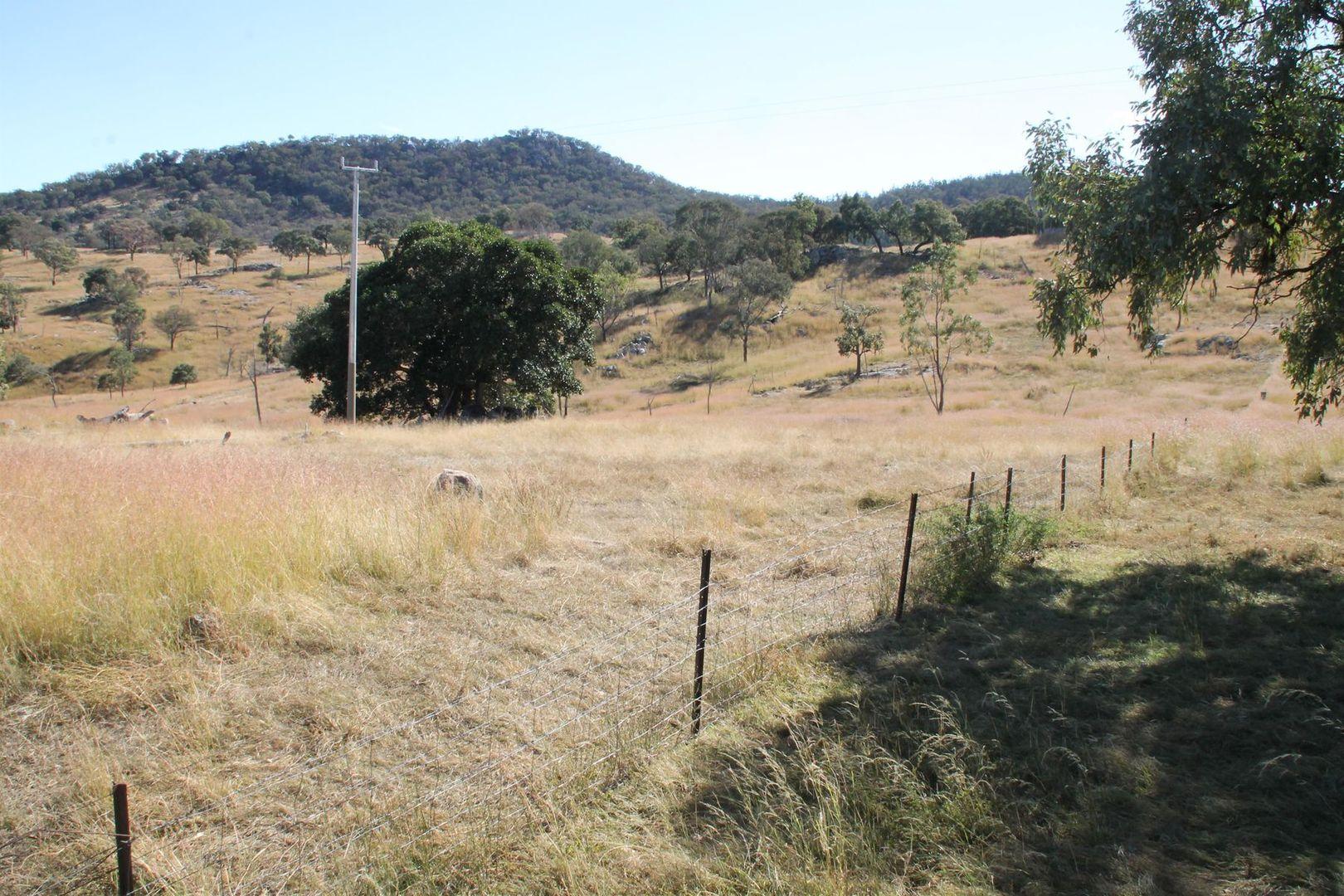 Lot 7 Gunyah Road, Tenterfield NSW 2372, Image 0