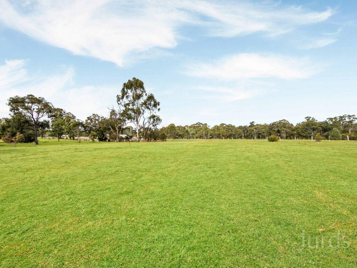 The Paddock, 53 Frame Drive, Abermain NSW 2326, Image 2