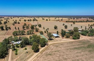 Picture of 2370 TOCUMWAL ROAD, Tocumwal NSW 2714