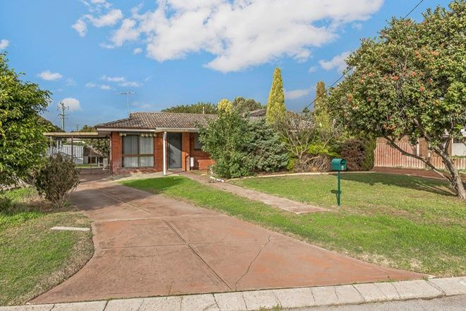 Picture of 6 Clennett Close, COOLOONGUP WA 6168