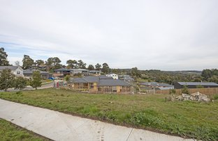Picture of 10 Henry Avenue, Mount Clear VIC 3350
