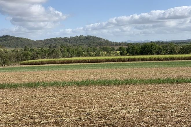 Picture of Bagley Creek Road, OAKENDEN QLD 4741