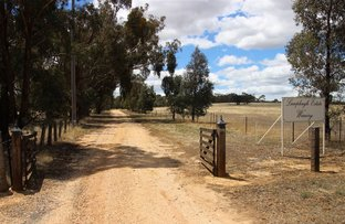 Picture of 5192 Sunraysia Highway, Lamplough VIC 3352