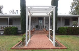 Picture of 8 MEARES STREET, York WA 6302