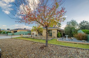Picture of 27 Woodlands Circuit, Echuca VIC 3564