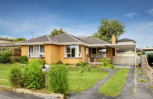 Picture of 12 Paul Road, Forest Hill VIC 3131