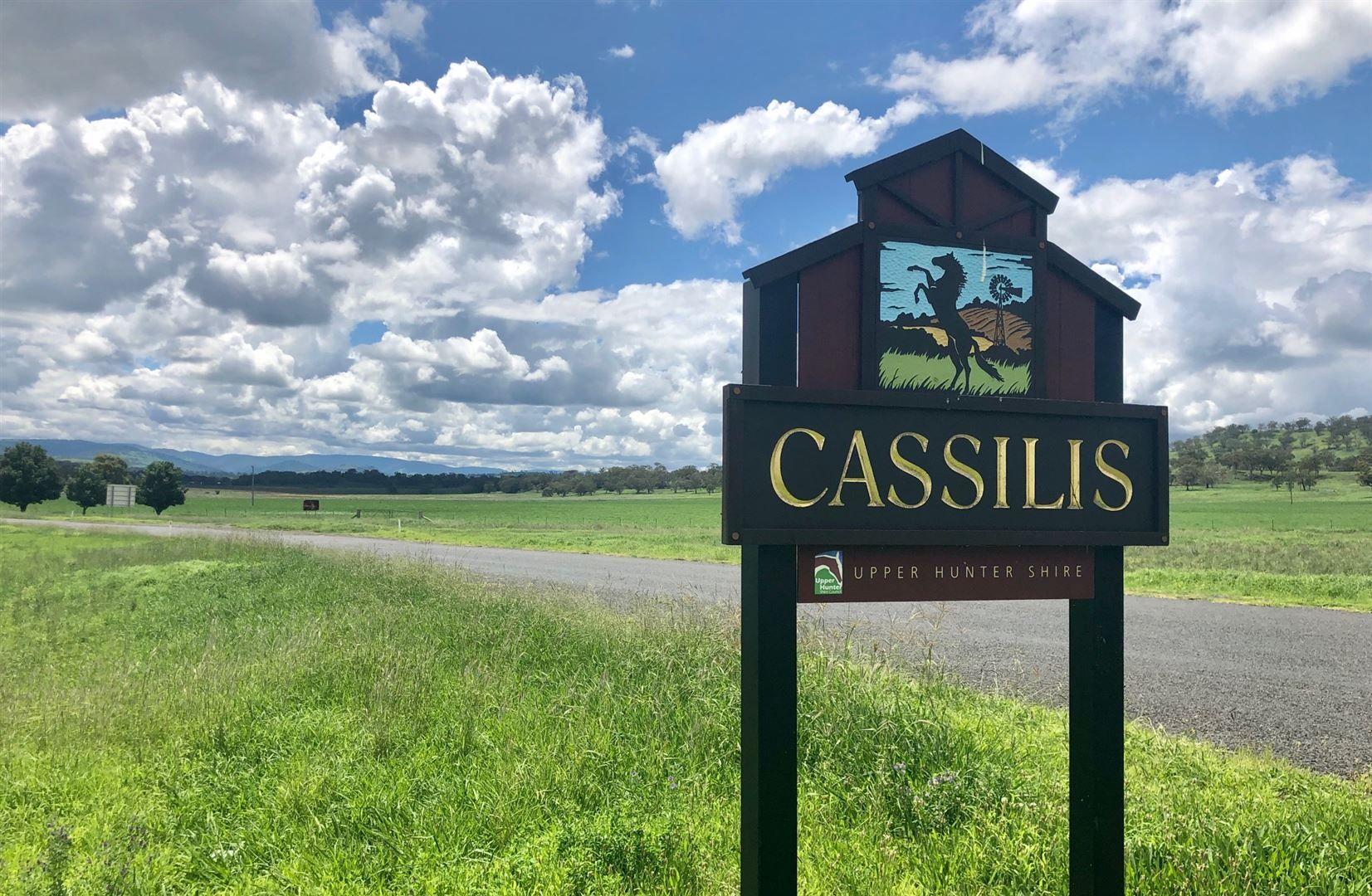 37 Ancrum Street, Cassilis NSW 2329, Image 1