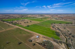 Picture of 60 Thompsons Rd, Cohuna VIC 3568