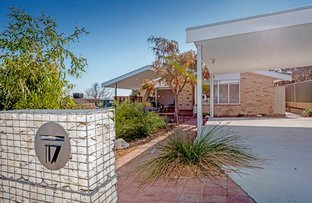 Picture of 17 Prowse Street, Beaconsfield WA 6162