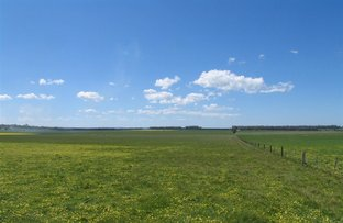 Picture of 1435 Lismore-Pitfield Road, Wallinduc VIC 3351