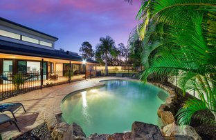 Picture of 5 Tulipoak Court, Little Mountain QLD 4551
