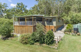 Picture of 2495 Eumundi Kenilworth Road, Kenilworth QLD 4574