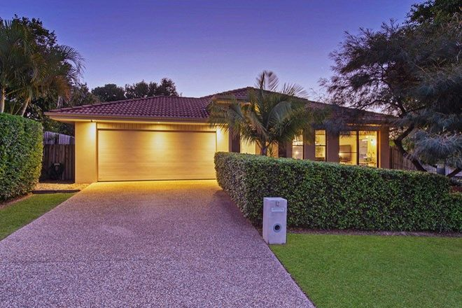 Picture of 12 Jaxson Terrace, PIMPAMA QLD 4209