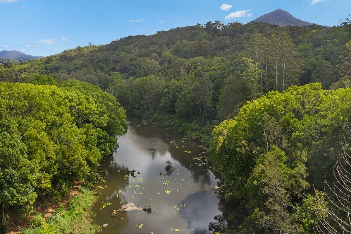 73 MOUNT WARNING ROAD, Mount Warning NSW 2484, Image 2