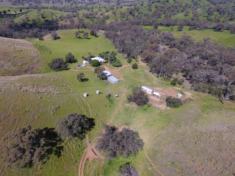 3429 Cobbadah Road, Bingara NSW 2404, Image 0