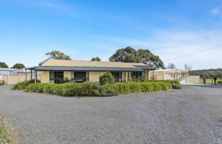 Picture of 1950 Glenelg Highway, Scarsdale VIC 3351