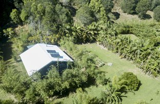Picture of 273 Crabbes Creek Road, Crabbes Creek NSW 2483