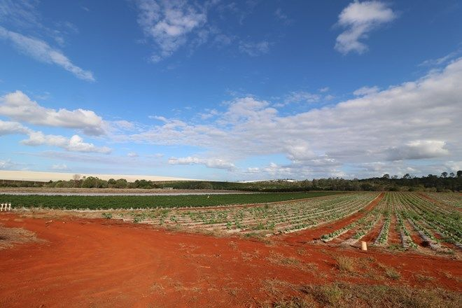 Picture of 45 Plantation Road, SOUTH ISIS QLD 4660