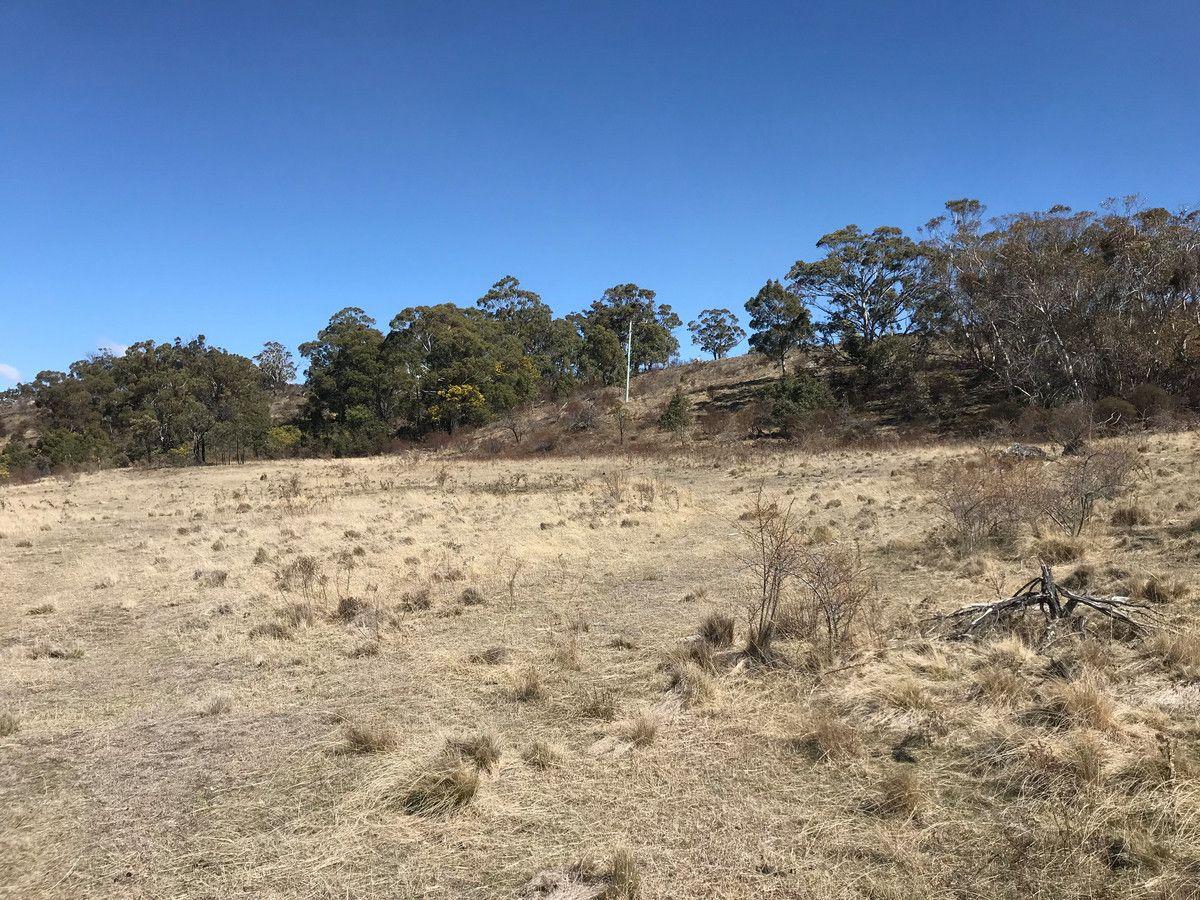 Dry Plains Road, Wambrook NSW 2630, Image 2