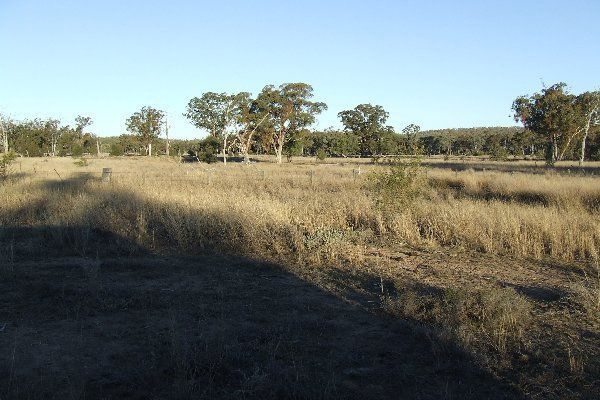 "1816 Acres ""Limestone"", Texas QLD 4385, Image 0"