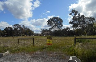 lot 6 Lysaght St, Berrigan NSW 2712