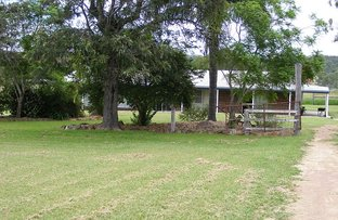 Picture of 373 Reillys Road, Cushnie QLD 4608