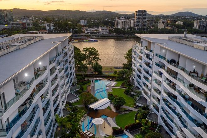Picture of 1505/45 Duncan St, WEST END QLD 4101