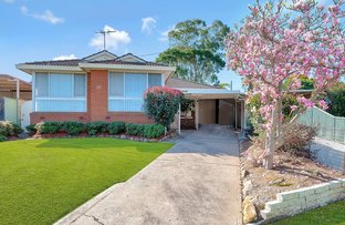 Picture of 45 GREVILLIA CRESCENT, Greystanes NSW 2145