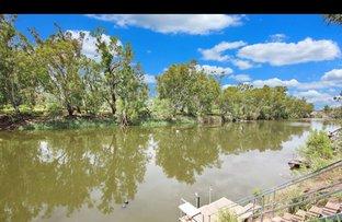 Picture of 55 Rivergums Drive, Goondiwindi QLD 4390