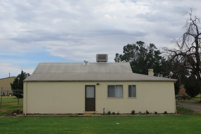 Picture of 987 Brace Road, GRIFFITH NSW 2680
