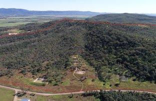 Picture of Rocky Dam Road, Koumala QLD 4738