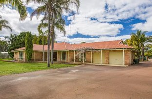 Picture of 123 Eucalypt Drive, Gelorup WA 6230